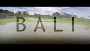 Travel Bali in a Minute – Drone Aerial Video   Expedia